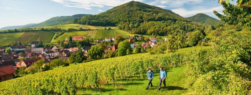 malerischer-blick-auf-leinsweiler